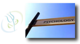 Psicoterapia Individuale, Psicoterapia di Gruppo, Psicoterapia con Adolescenti
