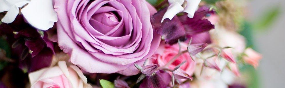 Primo piano di rose rosse e fiori porpore