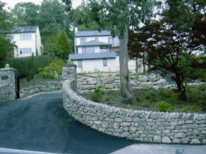 tree work - Garden Design Kendal
