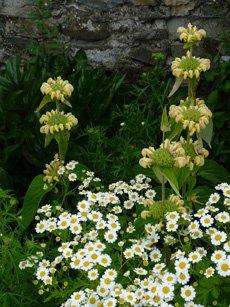 Garden Design Kendal garden design service, hard landscaping - kendal, workington