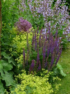 Garden Design Kendal modren garden design kendal as modern decoration with ideas