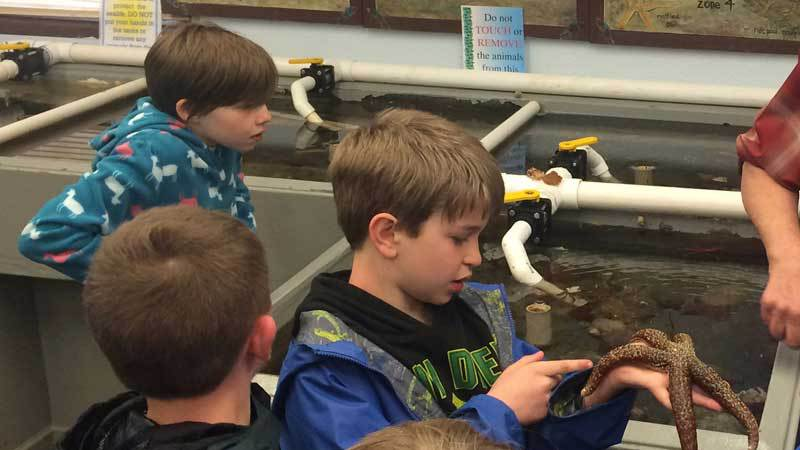 Camp Casey Sea Lab - Outdoor Education Program