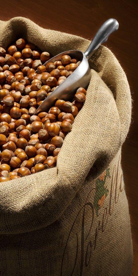 sack of hazelnuts
