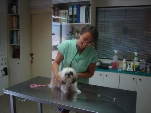 visita cane