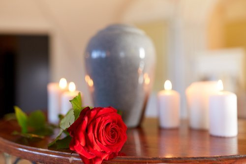 rosa appoggiata su un tavolo con candele accese