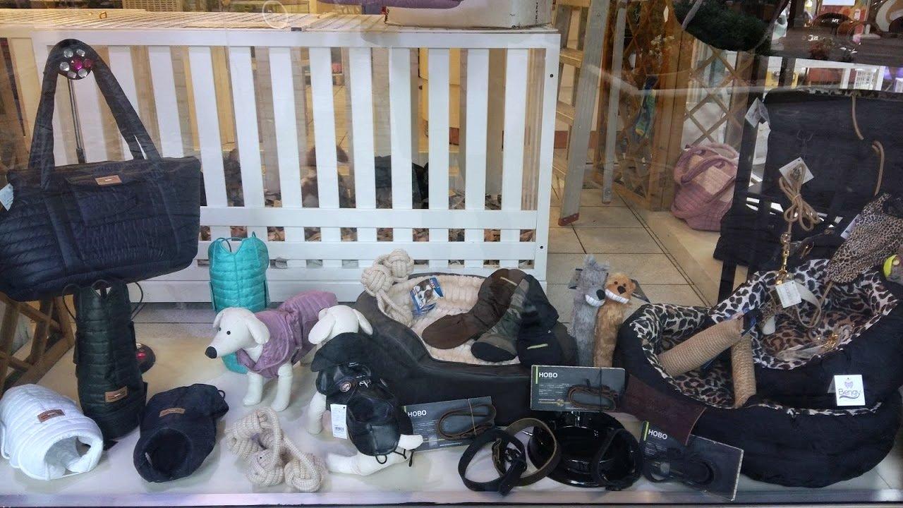 vetrina negozio di animali