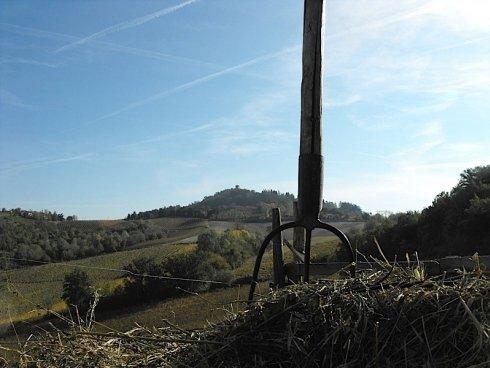 Vista dei vigneti e le colline dalla casa