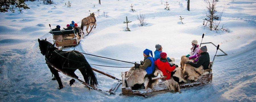 Aktiviteter - Kanefart Sjumilskogen booking Trysil