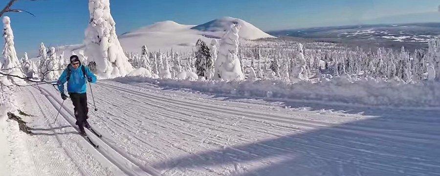 Langrenn - Aktiviteter Sjumilskogen booking Trysil