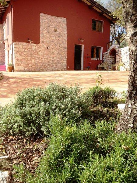 un'aiuola con del rosmarino, delle cortecce, sulla destra il tronco di un albero e di fronte un edificio di color bordeaux e in pietra