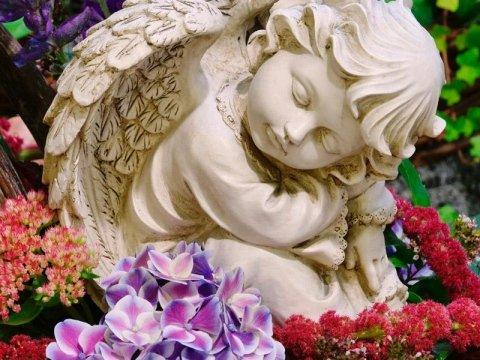 Addobbi funebri e floreali - Cerea