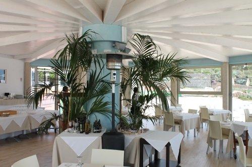 due tavoli e dietro delle palme in un ristorante