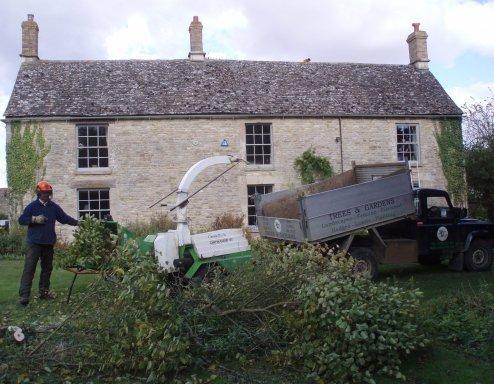 Major Clearances - Oxford - Trees & Gardens Ltd -