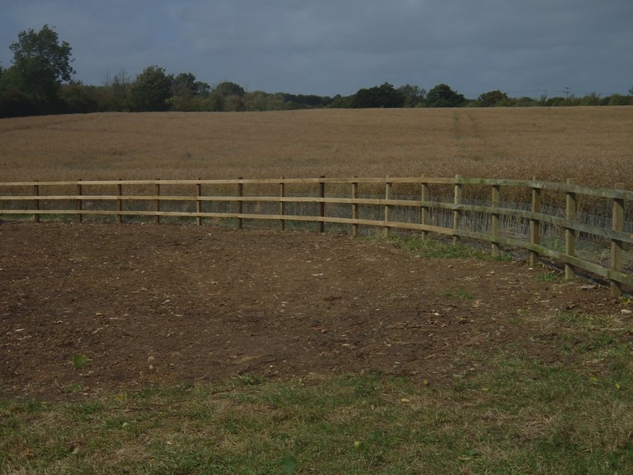 Leval, Seeded, Fenced - Oxford - Trees & Gardens Ltd -