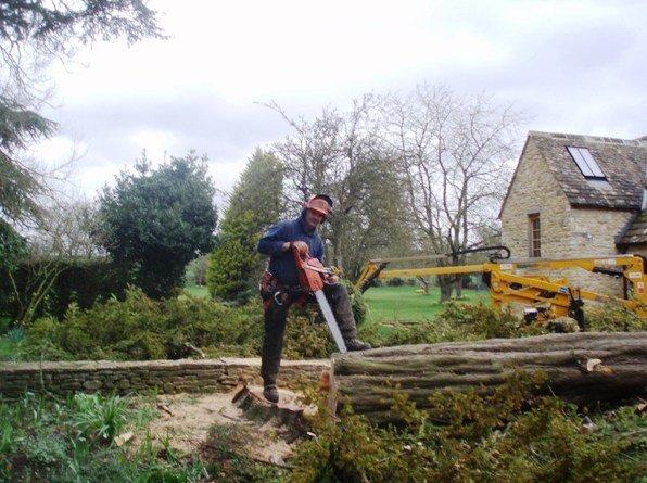 Paul Williams - Proprieter of Trees & Gardens Witney