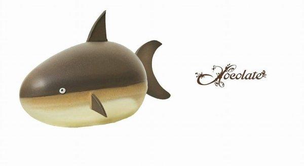 uova di pasqua a forma di squalo