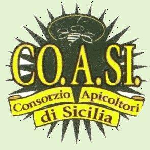 logo Co.A.Si
