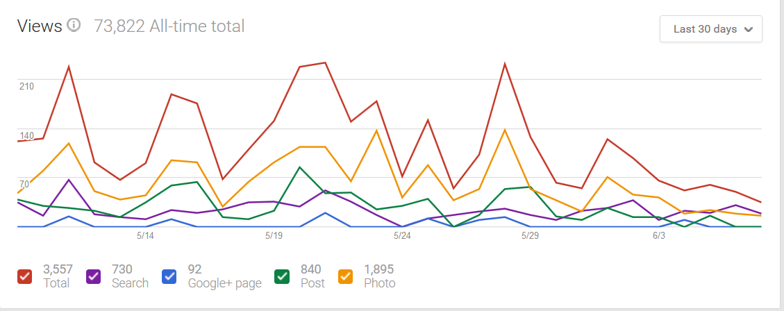 Google My Business Insights Page graph