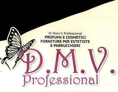 D.M.V. PROFESSIONAL - LOGO