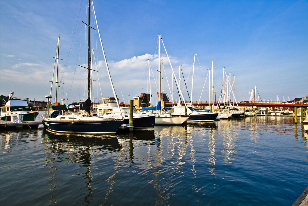Boats in Annapolis Harbor