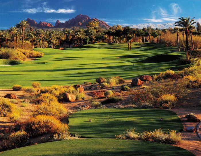 Desert in Scottsdale AZ