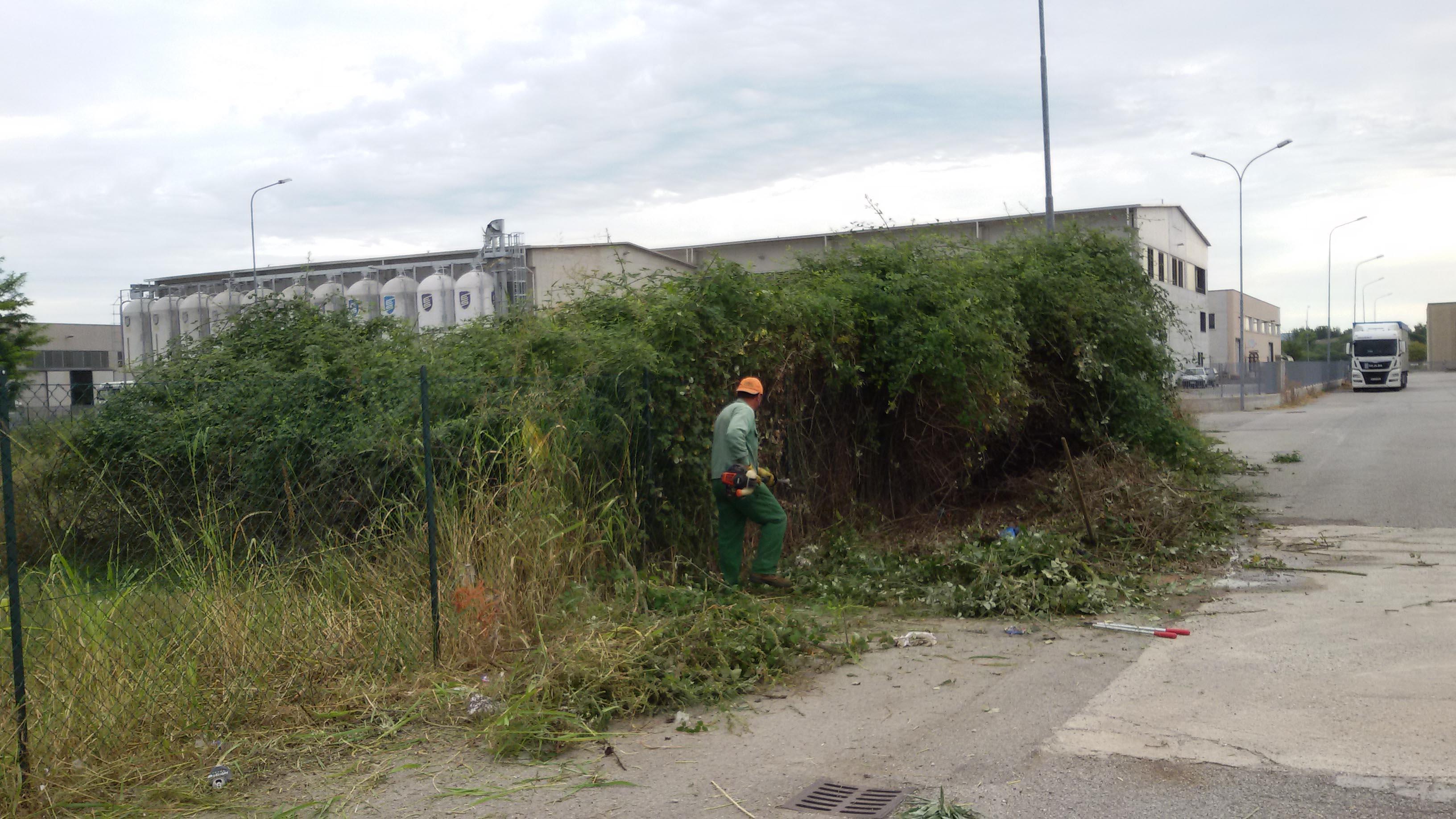 pulizie aree verdi