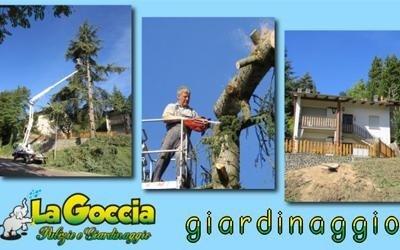 giardinaggio bologna