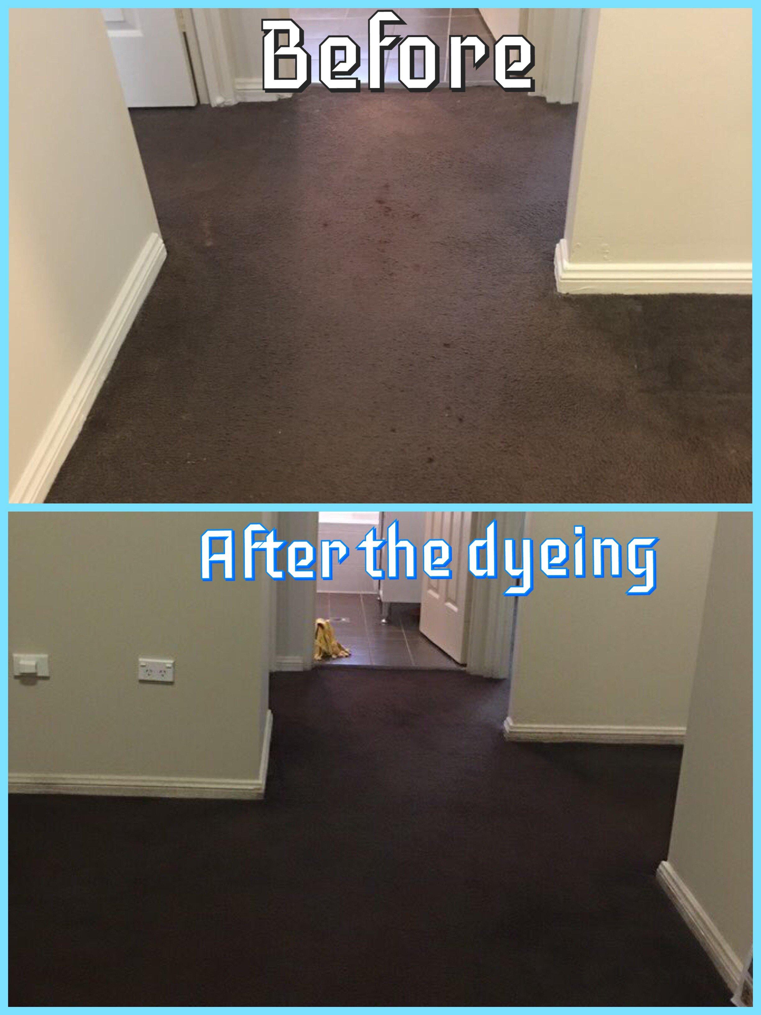 Carpet Dyeing Sydney Floor Matttroy