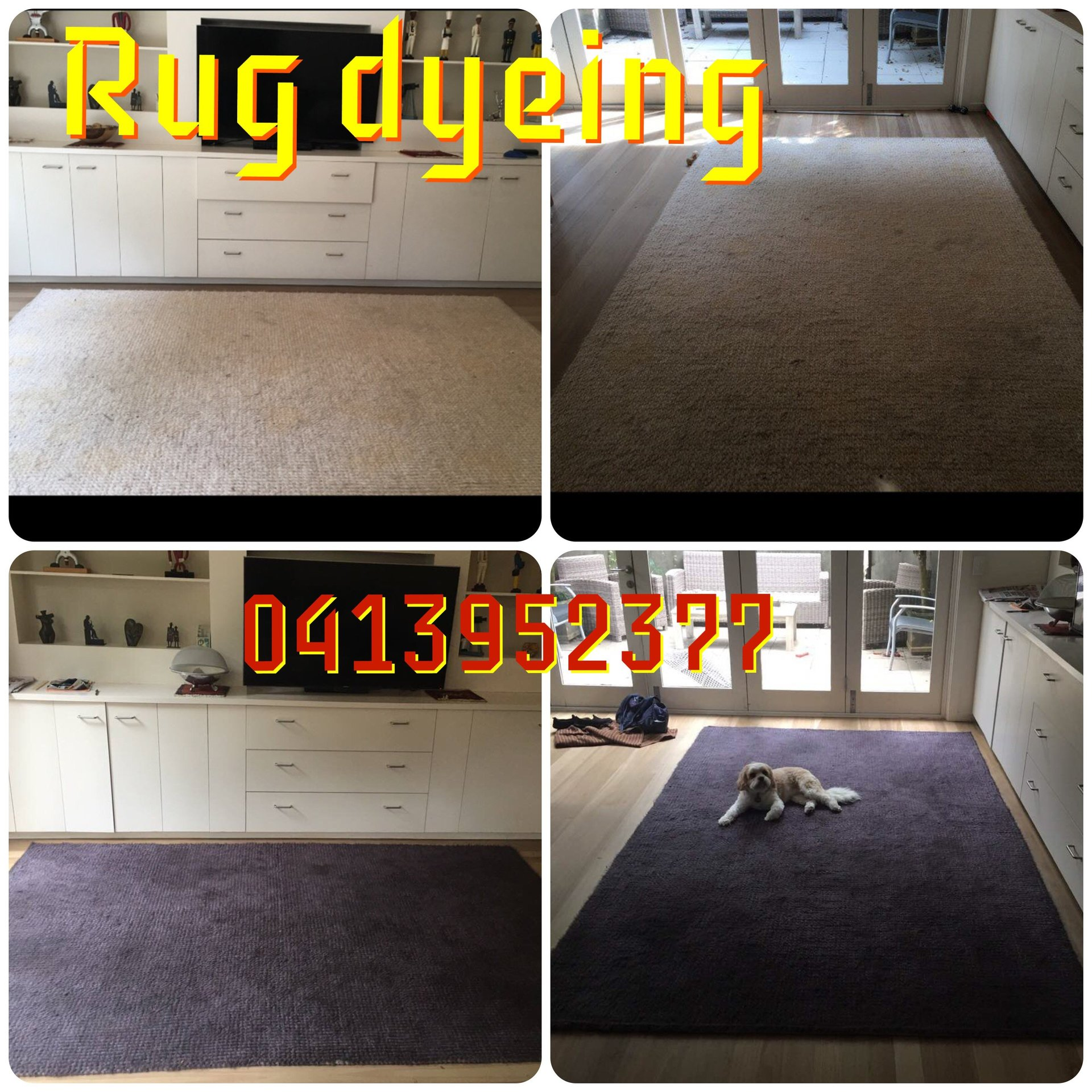 Carpet Restoration In Sydney A Amp A Spectrum Ptd Lty