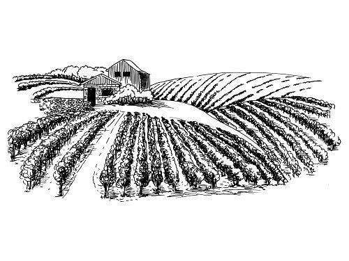 disegno di una cascina