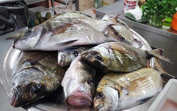 pesce fresco nella cucina del ristorante