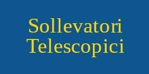 noleggio sollevatori telescopici