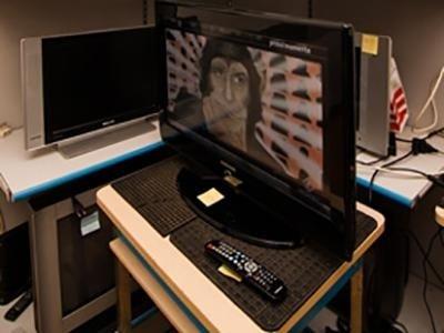 riparazione TV LCD
