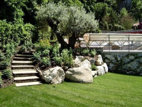 giardino erboso