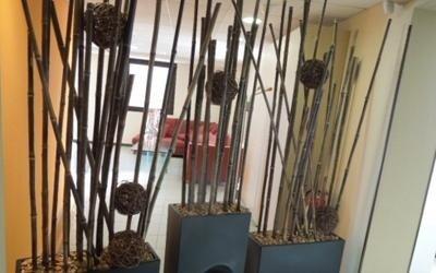 decorazione negozio piante