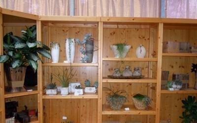 vasi ornamentali