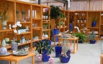 oggetti vari garden