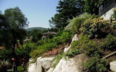 giardini piante