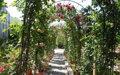 giardino decorato fiori