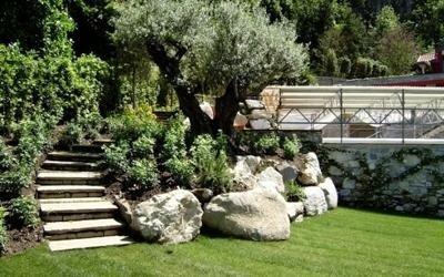 prato e giardino