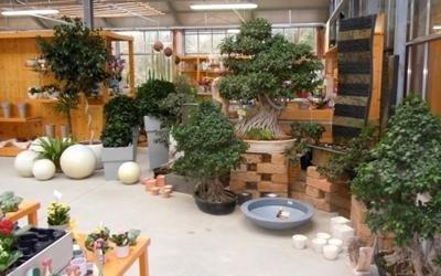 piante proposte garden