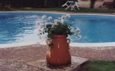 manutenzione pulizia piscine