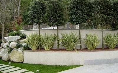 piante giardini