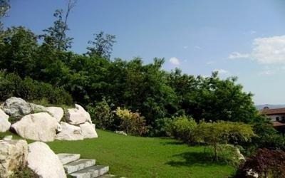 erba giardino manutenzione