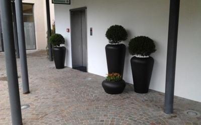 piante esterno negozio