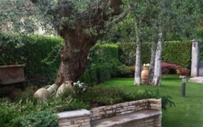 potatura giardini