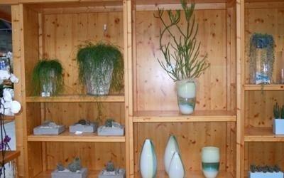 piante vasi garden