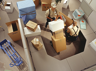 Professional Movers Raleigh, NC