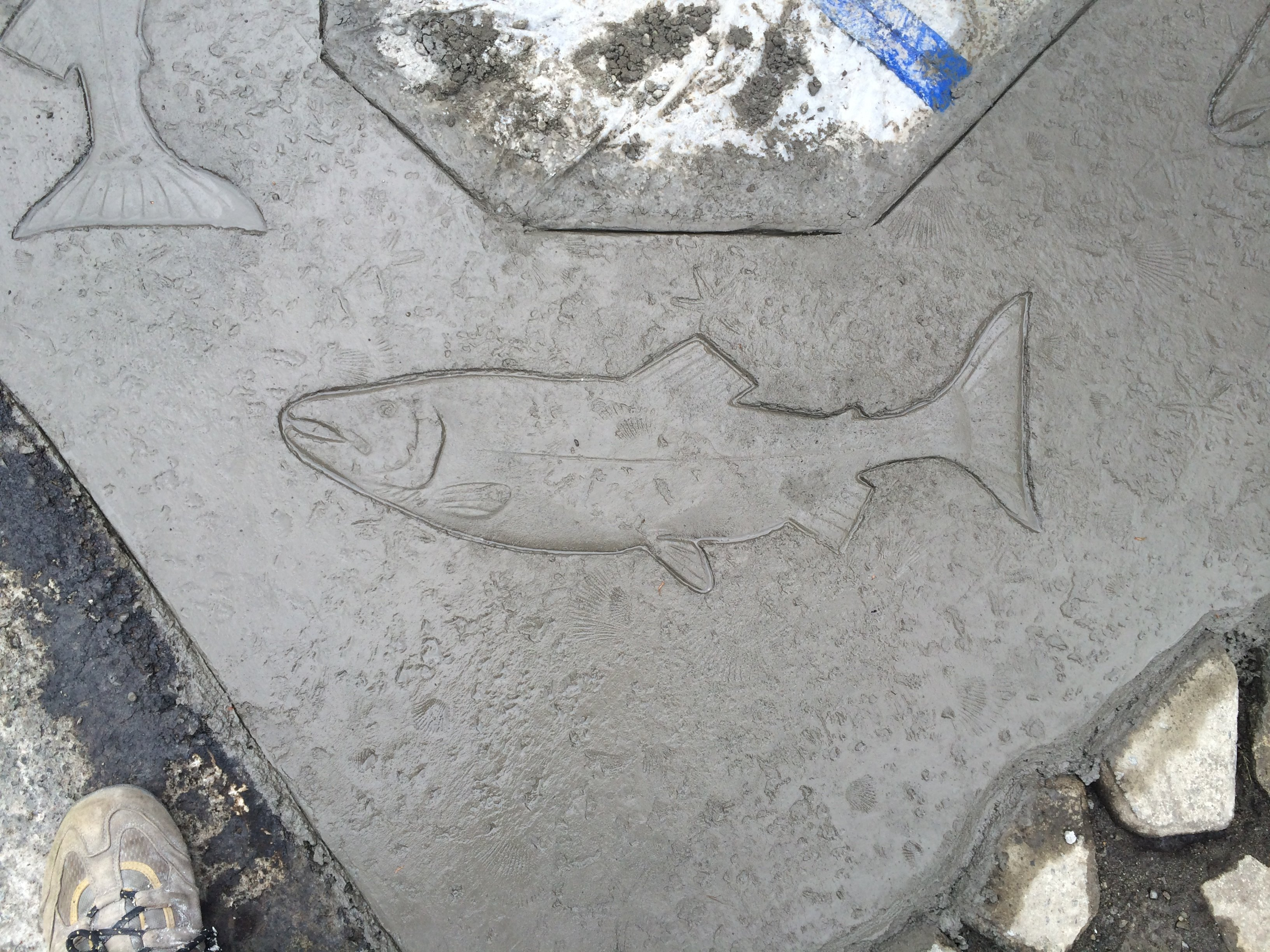 Stamped Concrete Fish Design in Oak Harbor Washington