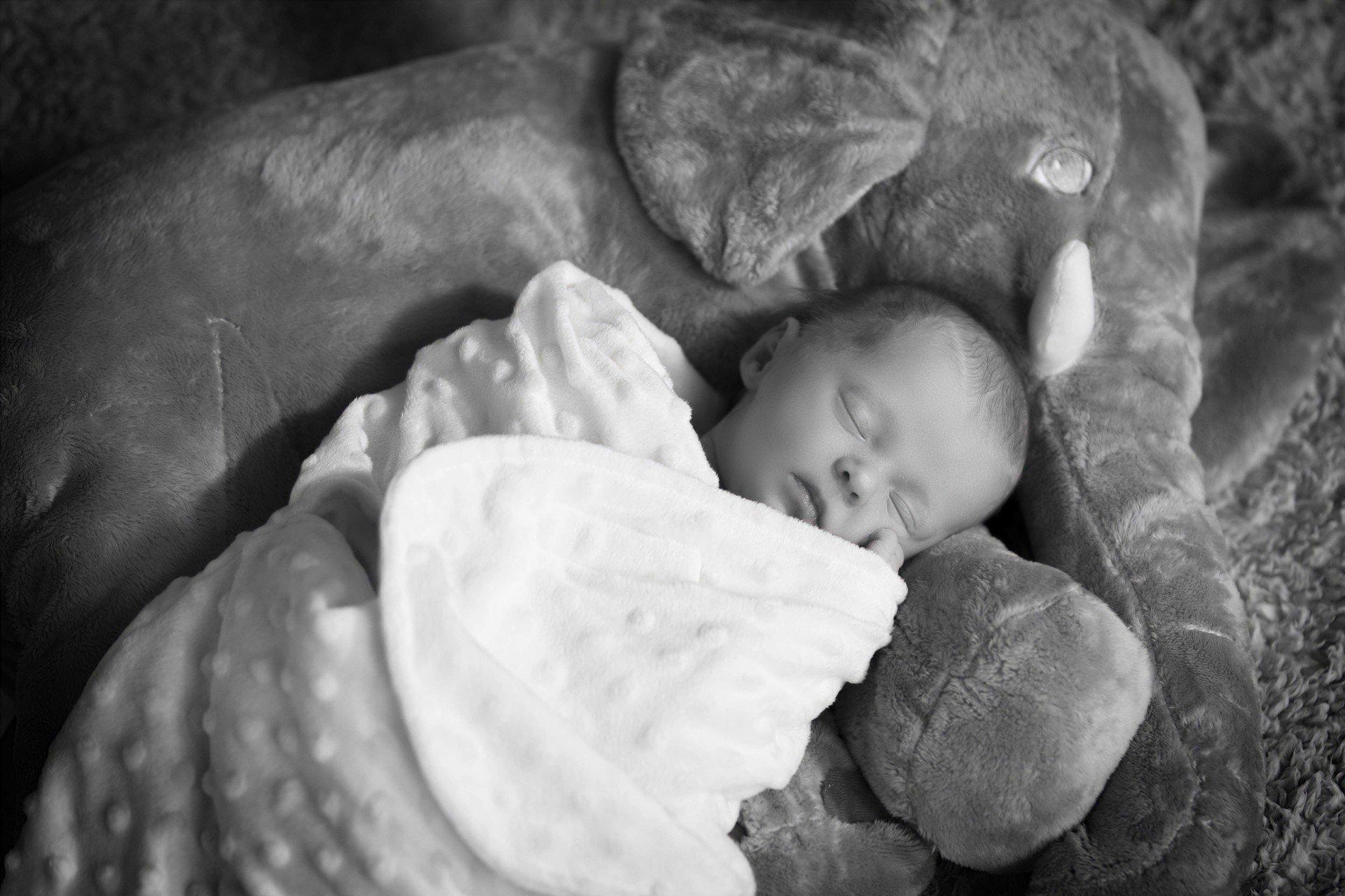 Newborn baby photography County Durham
